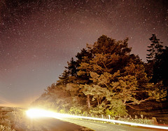 Light speed (NikNak Allen) Tags: dartmoor star stars tree trees car lighttraildarkskies longexposure night evening sky road