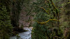 Eistobel Allgäu (Alta Alteo) Tags: eistobel allgäu argen schlucht wildwasser kalt bach