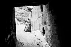 (Feininger's Cat (Thanks for 1.3 million views!)) Tags: meinfilmlab bessar3m summaritm50mmf24 film ilforddelta100 bunker løkken jylland blackandwhite danmark scandinavia denmark jutland skandinavien furreby analog fullframe leicasummaritm12450 summarit summarit50 50mm leicam rangefinder messsucher