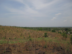 Palorinya hillside 2 (FAO Forestry) Tags: fao un uganda refugees unhcr world bank environment energy south sudan woodfuel forestry