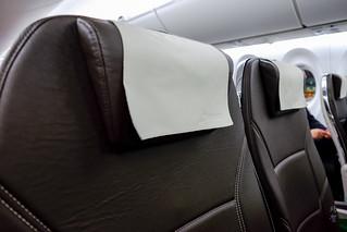 Headrest on the seats