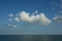 Suvi ja Saaremaa (anuwintschalek) Tags: ship fähre schiff laev parvlaev tõll töll maritime meri sea see ostsee itämeri läänemeri baltic pilv pilved cloud clouds taevas wolke himmel sky wolken rünkpilved nikond7000 d7k 18140vr eesti estland estonia suvi sommer summer july 2018 saaremaa saar insel island