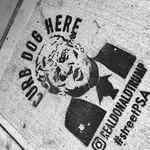Curb Dog Here Street PSA thumbnail