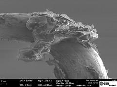 Grain from Japan's Hayabusa spacecraft (europeanspaceagency) Tags: asteroidday2018 asteroidday asteroid esa europeanspaceagency space universe cosmos spacescience science spacetechnology tech technology animation hayabusa2 hayabusa ryugu はやぶさ2 technologyimageoftheweek