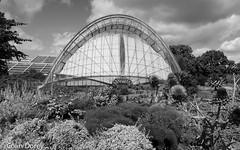 Kew Gardens  -24.jpg (Colin Dorey) Tags: alpinehouse conservatory greenhouse glasshouse kew gardens park botanicgardens richmond surrey london uk summer 2018 architecture structure trees bw monochrome blackandwhite blackwhite