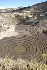Moray Inca ruins terraces Valle Sagrado Cuzco Peru (roli_b) Tags: moray inca ruin ruins terraces valle sagrado maras sacred valley urubamba cuzco cusco travel viajar tourism turismo peru inka