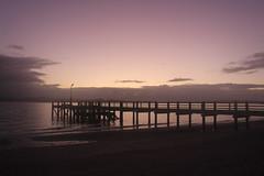 Dawn (neil.bather) Tags: dawn maraetai auckland wharf sea seascape jetty sunrise clouds beach new zealand