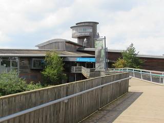 Slimbridge: WWT Slimbridge Wetland Centre (Gloucestershire)