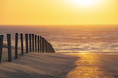 smooth (Wöwwesch) Tags: sunset sand smooth dunes fence light golden sea waves wind reflections walk summer windy evening beach