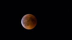 Blood Moon (SpotShot) Tags: bloodmoon blood moon lunar eclipse lunareclipse 2018 night sky nightsky sony a7 ilce7 sonya7 sigma150600mm 150600mm contemporary