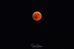 Lunar Eclipse (Henk Verheyen) Tags: italië italy zomervakantie buiten lunarexlipse maan maansverduistering moon outdoor summer zomer