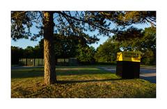 Long Island (PhotoRapper (Michael)) Tags: longisland ny newyork suffolkcounty greenlawn clothingdrop sunset tree parkinglot canondslr bayer cmos color cinestyle digital sigma sigmalens canon5dmkii sigma24mmf18exdg 1661 canon