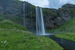 Selfoss Waterfall (rpersonca) Tags: iceland selfoss green rock water waterfall south is
