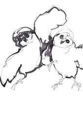 Chouettes Amoureux - Courting Owls [20180706] (rodneyvdb) Tags: animal art baudelaire bird blackandwhite bw contemporary courtship drawing explore expression expressionism illustration ink love owl poetry