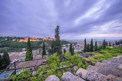 Grenade - Andalousie - Espagne (Lilian Mérico) Tags: soir nuit heure bleue toit alhambra cordoue cordoba espagne andalousie