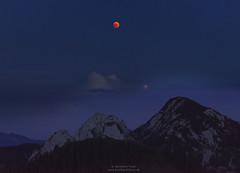 Total eclipse of the moon with mars (Bernhard_Thum) Tags: bernhardthum thum h6d100 hasselblad hc3250ii nature eclipse moon mars setzberg