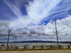 De paseo a Tucacas #tucacas #ig_falcon #igers #igersvenezuela #venezuelaes #instalovenezuela #gf_venezuela #all_shots #sinFiltro #CarlosColmenarezPhotography #parquenacionalmorrocoy #relindavenezuela #ig_venezuelan_pro #follow #like #photooftheday #fotode (KARLINHOS18) Tags: igers carloscolmenarezphotography venezuelaes igfalcon fotodeldia sky skyporn gfvenezuela like igersvenezuela follow igvenezuelanpro sinfiltro relindavenezuela parquenacionalmorrocoy instalovenezuela tucacas allshots photooftheday