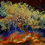 Tree On Fire thumbnail