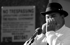 Truman's Ridge, Sycamore. 7 (EOS) (Mega-Magpie) Tags: canon eos 60d outdoors live bluegrass music trumans ridge sycamore public library musicians bw black white mono monochrome people person guy man dude fella il illinois usa america