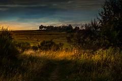 XT2W9394 (Wolfgang von Vietinghoff) Tags: sunset eifel dreiborn