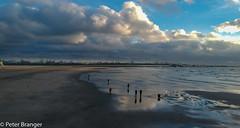 Bugs can fly! (Peter Branger) Tags: activeassignmentweekly abugsview shore beach water sea sand drone djispark bestofweek1 bestofweek2