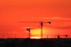 Crane Fetish II (@FunkyAppleTree) Tags: sunset heatwave england london heatwaveuk sun twilight sunsetting cranes crane construction dusk landscape vista orange silhouette city cityscape evening summer nightfall towercrane