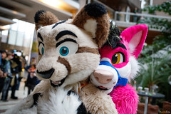 FOX_0472 (Kyoto Fox) Tags: nfc nfc2018 nordicfuzzcon nordic fuzz con sweden furry fursuit fursuits