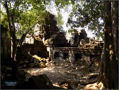 Angkor, Preah Khan Temple 20180203_135321 DSCN2748 (CanadaGood) Tags: asia seasia asean cambodia siemreap angkor buddhist hindu khmer preahkhan temple tree building architecture archaeology canadagood 2018 thisdecade color colour