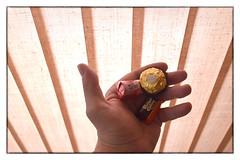 Hand Holding Candy (SoS) (myphotomailbox) Tags: rotterdam netherlands strevelsweg indoor smileonsaterday holding hsos