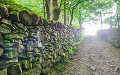 Photo of Panorama walk expectations