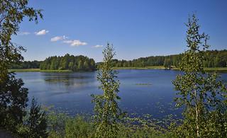 Summer on the lake Päijänne 💙 Sysmä, Finland.