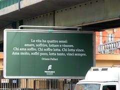 La vita (PaulaCamara) Tags: la vita lavita vida italy italian italia europa europe bari oriana journalism journalist streetphotography street ph photography photo rame ramephotography