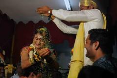 DSC_1288 (rajashekarhk) Tags: jyothi nitish rituals wedding kannidiga karnataka marriage tradition bride bridegroom rice ricegrains enjoy expression southindia smile colours culture nikon natural family rajashekar yellow flower we w weddingphotography marriagephotograph candidphotography