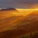 El valle dorado - The gold valley