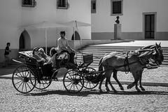 2HP (desmokurt1) Tags: lissabon lisbon lagos faro portugal algarve sw bw color kurtessler atlantik tejo vascodegamma downtown village water pferde horse evora