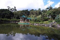 SDIM0114 (LZ775) Tags: sigma 1750mm sd1m 適馬 适马 康樂公園 honglokpark fanling 粉嶺 岭 香港 新界 hongkong newterritories x3 foveon