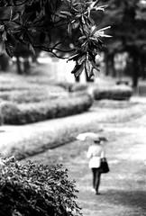 """"""" Prima del temporale """" (Davide Zappettini) Tags: park woman trees alone filmphotography davidezappettiniphotography ilford bw blackandwhite bianconero rain"""