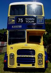 Leyland Bus Glyndyfrdwy Classic Transport Show June 30th 2018 (mrd1xjr) Tags: leyland bus glyndyfrdwy classic transport show june 30th 2018