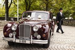 Jaguar Mark Seven 1952 (frosol) Tags: canon canon80d 80d eos sigma35mmf14art sigma35mmf14 sigma stavanger bryllup jaguar jaguarmarkseven car cars old wedding vintagecar