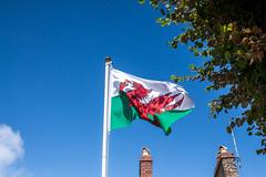 Welsh Flag (SKAC32) Tags: kidwellycastle westwales carmarthenshire welshflag reddragon