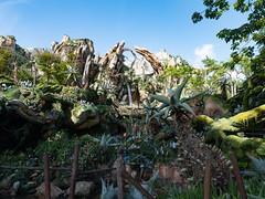 1608 Disney's Animal Kingdom11 (nooccar) Tags: 1806 animalkingdom devonadams devoncadams devonchristopheradams disney disneyworld disneysanimalkingdom june june2018 devoncadamscom devoncadamsgmailcom