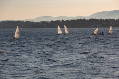 Afternoon sailing (JoachimBakken) Tags: sailing oslo oslofjorden