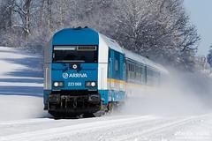 223 068 Arriva, ALX 38704, Röthenbach (Allgäu) - Hergatz (Germany) (Martin Válek) Tags: rail railway railroad train locomotive zug eisenbahn vlak železnice alex bayern allgäu