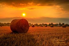 Sommerabend.... (Frank Heldt Photography) Tags: kamen nordrheinwestfalen deutschland de sonne sonnenuntergang sun sunrise sunset canon 5dmarkiv