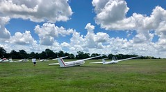 Soaring Club of Houston, Waller, TX (- Adam Reeder -) Tags: soaring aviation flying air sky clouds y2018 m07 d14 lat300 lon960 grimes texas united states photo jpg apple iphone x club houston waller tx spaceshuttle missile projectile warplane wing cannon parachute geyser airliner pinwheel tree aircraft person