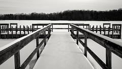Snow Covered Dock (nick.mirkovich) Tags: winter snow frozen lake blackwhite landscape d700 nikon spencerlake ohio spencer