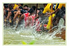 A for Effort! (JohnKuriyan) Tags: kerala india nehrucup snakeboatrace kottayam