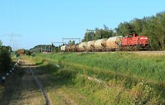 DB Cargo 6416 @ Herfte Aansluiting (Sicco Dierdorp) Tags: db dbc cargo serie6400 unitcargo onnen kijfhoek ketelwagen keteltrein dolime dolomiet nedmag herfte aansluiting meppel zwolle