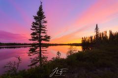 Lumière du Nord (jlf_photo) Tags: baie james paysage landscape sunset sunrise