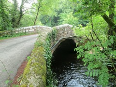 Drakeford Bridge East Dartmoor (Bridgemarker Tim) Tags: drakefordbridge devonbridges manaton lustleigh